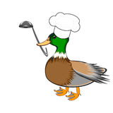 A funny duck with a chef hat and a soup ladle in i Stock Images