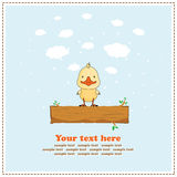 Funny duck, greeting card, vector Royalty Free Stock Photos