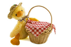 Funny duckling basket Royalty Free Stock Images