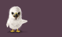 Funny Eagle chick Stock Images