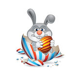 Funny Easter Bunny Hatched Royalty Free Stock Images