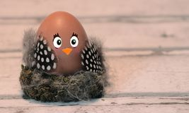 Funny easter chick, royalty free stock photo