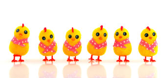 Funny easter chicks Royalty Free Stock Images