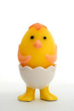 Funny Easter egg. Chick-shaped egg in a cute egg holder on white background stock photos