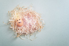 Funny Easter egg with drawn face lying in nest Stock Images
