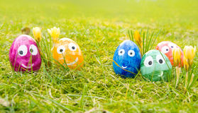 Funny easter eggs. Easter eggs with faces in fresh green moss and grass of a spring meadow Royalty Free Stock Photos