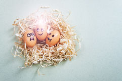Funny Easter eggs with drawn faces depicting various emotions lying in nest.  Royalty Free Stock Images