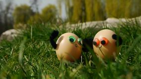 Funny easter eggs stock video footage