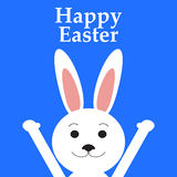 Funny easter rabbit Stock Image