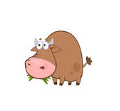 Funny eating bull Stock Image