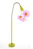 Funny eco energy concept. Eco energy concept. Huge punk daisies growing out of a green lamp Stock Photos