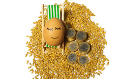 Funny egg and euro coins with seeds Stock Photography