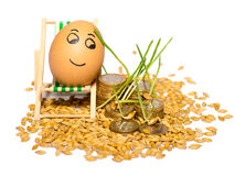 Funny egg and Stack of coins and rice seeds Stock Image