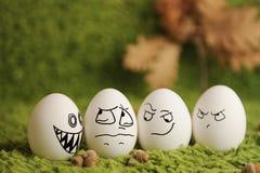 Funny eggs Stock Photos