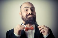 Funny elegant bearded man touching beard Royalty Free Stock Photo