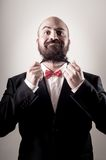 Funny elegant bearded man touching beard Stock Image