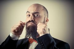 Funny elegant bearded man touching mustache Stock Images