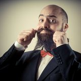 Funny elegant bearded man touching mustache Royalty Free Stock Photography