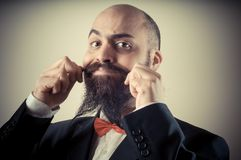 Funny elegant bearded man touching mustache Stock Image