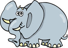 Funny elephant. Illustration of funny surprised elephant Royalty Free Stock Image