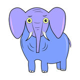 elephant character cartoon vector. Elephant  beautiful color funny purple Stock Image