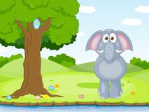 Funny Elephant. Big funny Elephant on a shore Stock Images