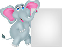 Funny elephant cartoon with blank sign Royalty Free Stock Photos
