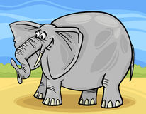 Funny elephant cartoon illustration. Cartoon Illustration of Funny Gray African Elephant Stock Photos