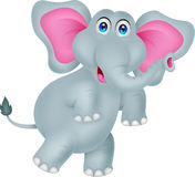 Funny elephant cartoon Stock Images