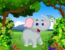 Funny elephant cartoon with landscape background Stock Image