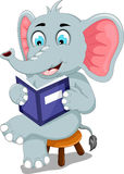Funny elephant cartoon sitting with reading book Stock Photos