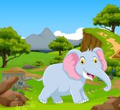 Funny elephant in the jungle with landscape background Stock Image