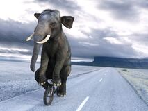 Funny Elephant Riding Bike, Bicycle, Surreal