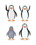 Funny Emperor King Penguins Set Isolated on White. Funny emperor penguins set isolated on white. Blue penguin with white belly. Animal adorable penguin character Stock Images