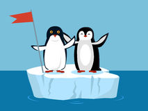 Funny Emperor Penguins on Arctic Glacier with Flag Stock Photography