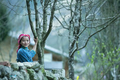 Funny Ethnic Minority Children In Stone Fence At Lung Cam Village Stock Photo