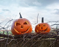 Funny face pumpkins sitting on fence Stock Images