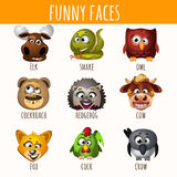 Funny faces of animals Royalty Free Stock Photography
