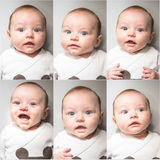 Funny faces- different baby expressions Stock Photography