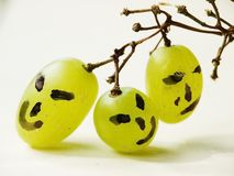 Funny faces on grapes stock photo