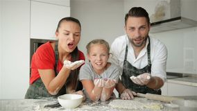 Funny Family Having Fun In The Kitchen. They Blow The Flour From Their Hands. It Looks So Cute. HD, Together, Indoors, Three, Happy stock video