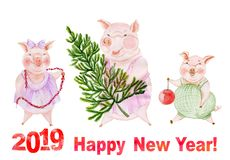 Funny family of pigs are going to decorate Christmas tree. Greeting card with Happy New Year 2019 sign. Watercolor painting. Hand painted illustration royalty free illustration