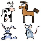 Funny farm animals Royalty Free Stock Photography