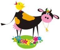 Funny farm animals. (cow, chicken Stock Photos