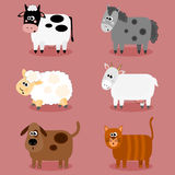 Funny farm animals and pets collection Stock Image
