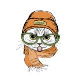 Funny fashion cat face showing tongue,hat and scarf,hand drawn. Isolated on white background,vector illustration Stock Photos
