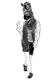 Funny fashion zebra (black and white) Stock Image