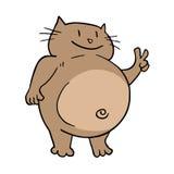 Funny fat cat Stock Photos