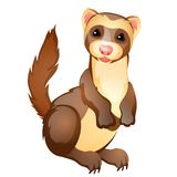 Funny ferret toy isolated on white background. Vector cartoon close-up illustration. Funny ferret toy isolated on white background. Vector cartoon close-up Royalty Free Stock Photo