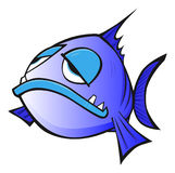 Funny Fish Stock Photo
